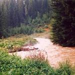 Le ruisseau de Caput en crue !